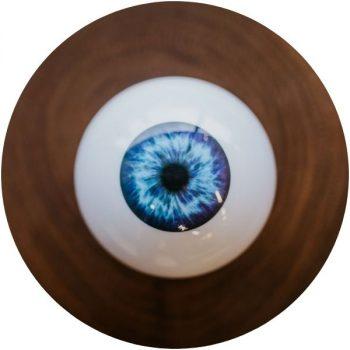 Eye Love Olympia WA Eye Doctor